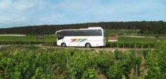 Autocars_Morey_Voyages_Visite_du_vignoble_de_Bourgogne.jpg