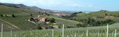 Voyages_autocars_Morey-Visite_du_vignoble_de_Barolo-Piemont.jpg